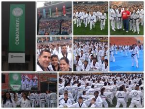 Taekwondo Fepami - Virada Esportiva 2015
